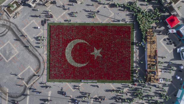 Турецкий флаг из тюльпанов вошел в Книгу рекордов Гиннеса